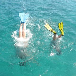 snorkelen-vinnen